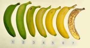 קצב-הבשלה-של-הבננה